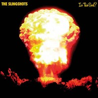 The Slingshots - Is This Soul?