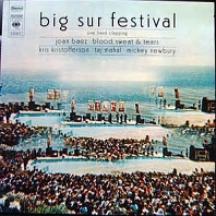Big Sur Festival - One Hand Clapping