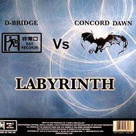 Labyrinth / Daylight