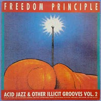 Freedom Principle - Acid Jazz And Other Illicit Grooves Vol. 2